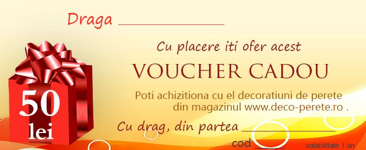 Voucher cadou pentru casa pe www.deco-perete.ro